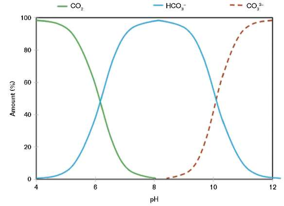 FIGURE 4 CO<sub>2</sub> is in solution at a low pH, but mixtures of bicarbonate and carbonate ions are formed at a pH above eight.