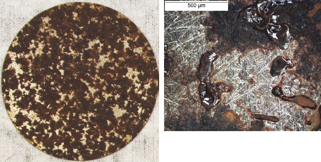 The exposed CS sample with <i>BL</i>-inoculated soil after cleaning (left). The sample (right) showed elongated corrosion features on the surface, which could be associated with bacterial activity. Photos courtesy of Xihua He.